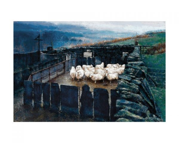 Keith Bowen: Penned Sheep
